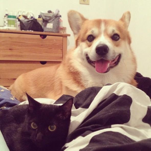 Tinico e seu fiel escudeiro ;)